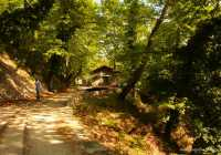 Trekking on Pelion
