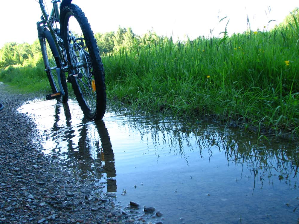 Nature Cycling for Physical and Mental Health