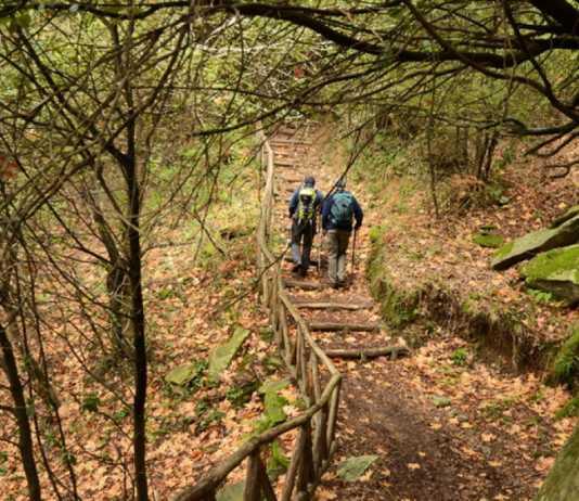 Hiking in Greece: Rhodope Mountain Range