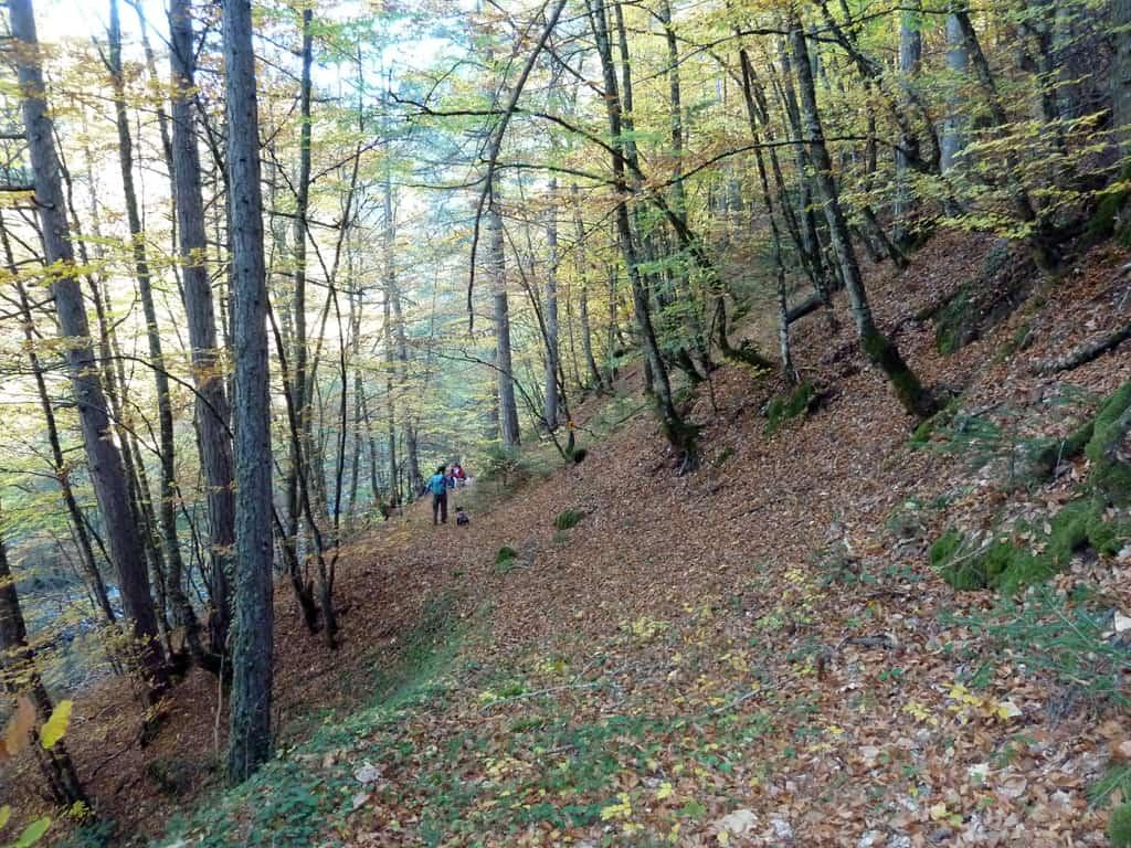 Hiking Vovousa