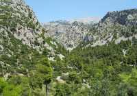 Evia Greece Dirfi