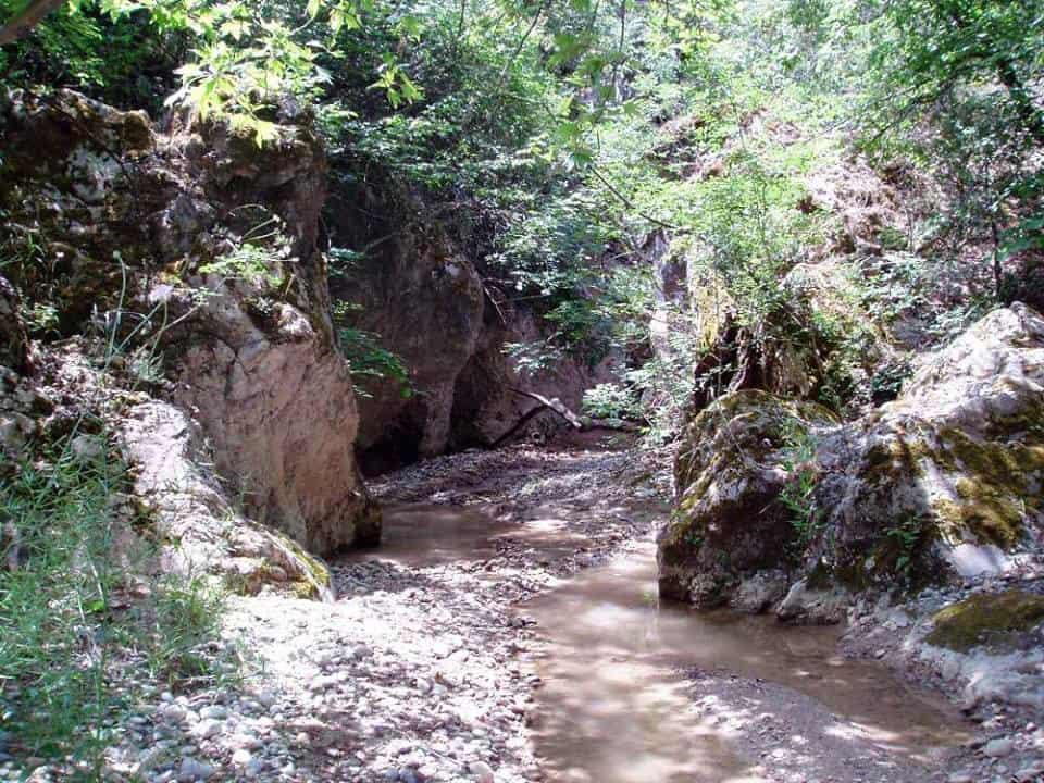 plisorema canyon fthiotida