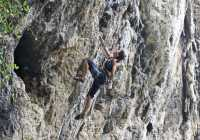 paou field pelion greece