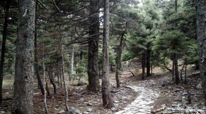 agali gorge
