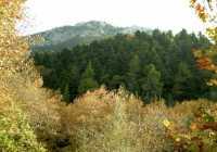 evia generic mountains