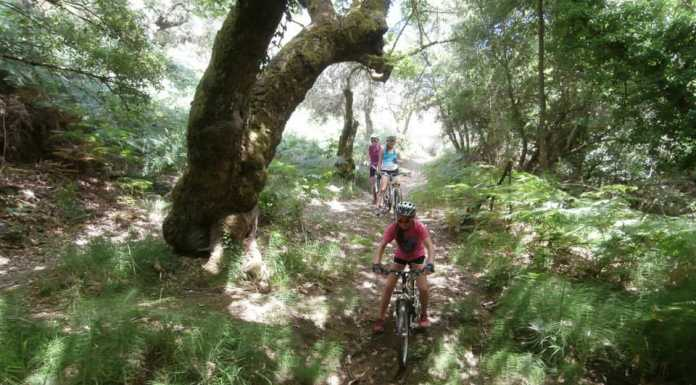 Skiathos Mountain Bike