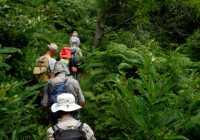 Trekking Pelion Week