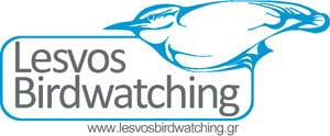 Birdwatching Lesvos