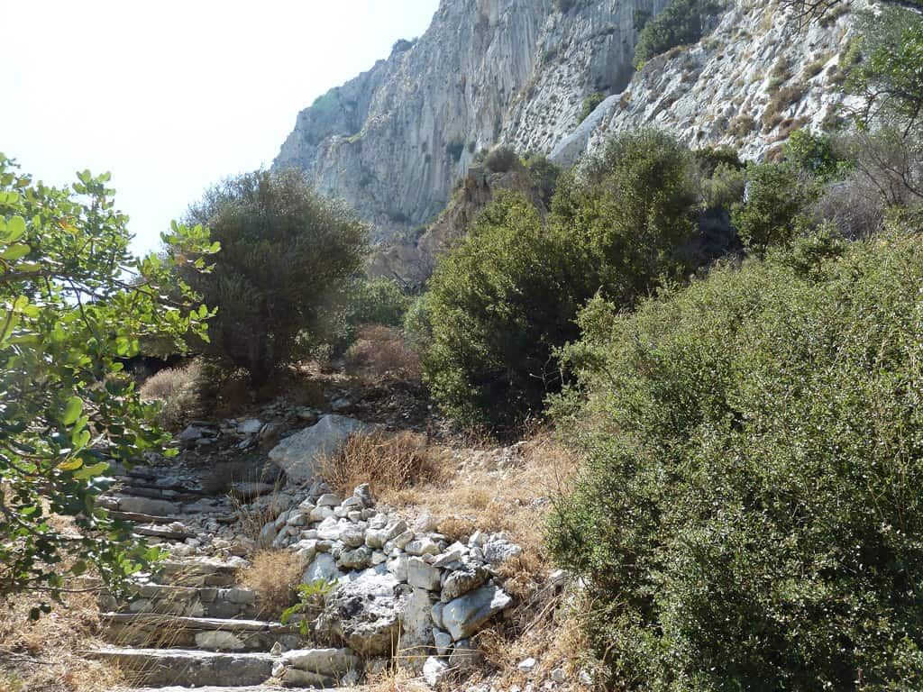 the life of pythagoras of samos The story of ascended master kuthumi's human adventures continues on with the life of pythagoras of samos – history's most famous mathematician and one of ancient greece's most notable philosophers.