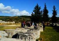 Nemea Zeus temple surrounding area