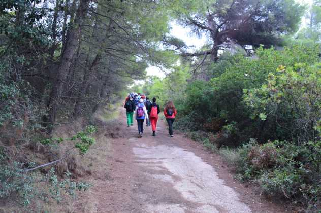 Hiking in Athens, Parnitha