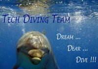 Dolphin Dream Dare Dive