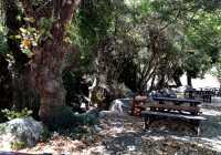 Explore the Secrets Wines, Olives and Cretan Knives