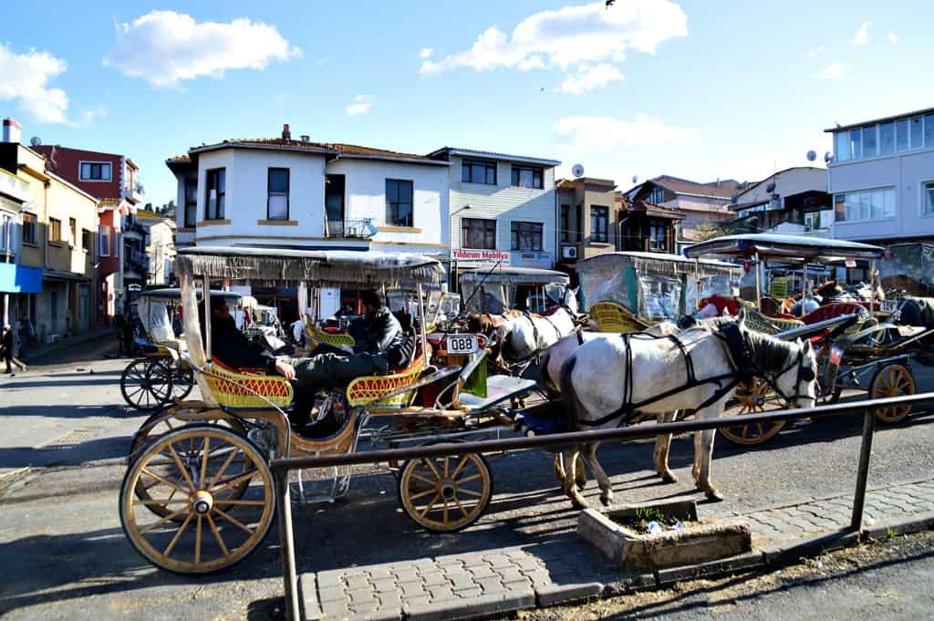 Prigkipos Istanbul Turkey