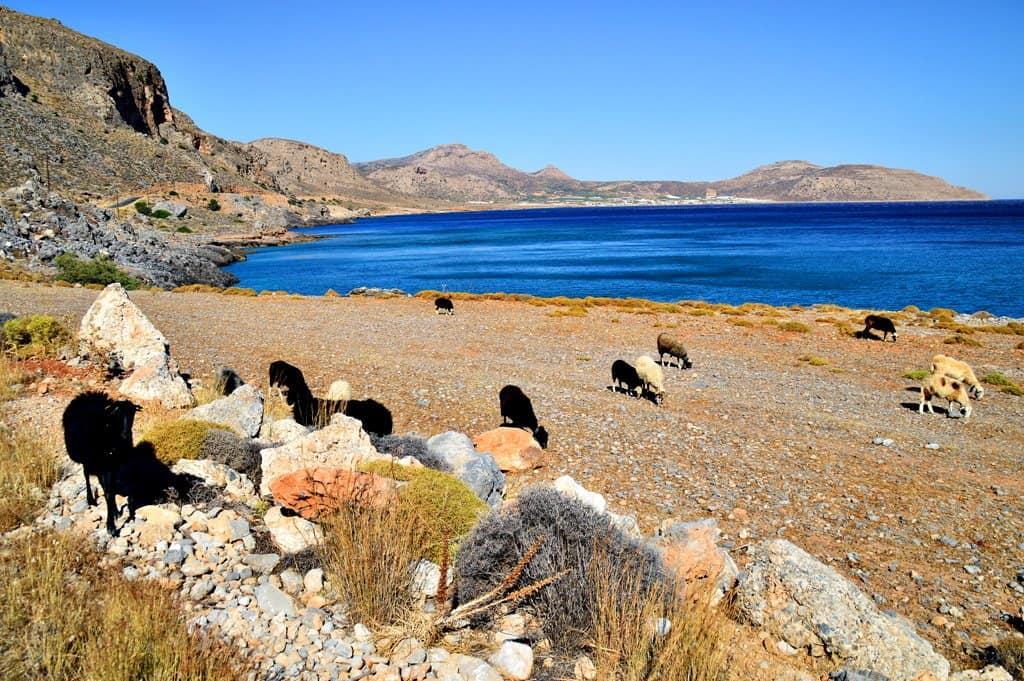 Pervolakia Canyon Crete - Crete to Santorini Ferry