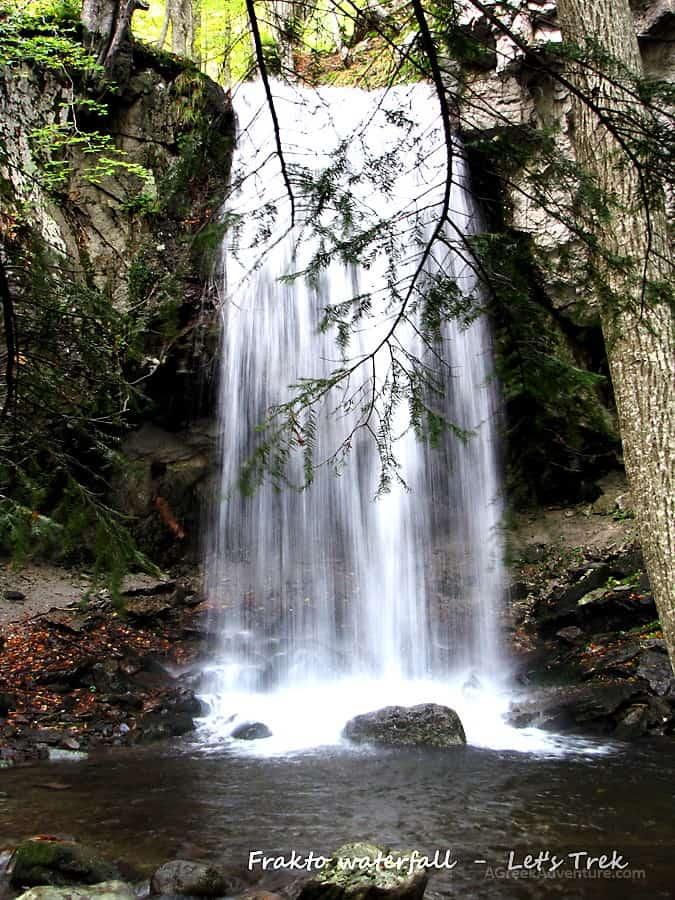 Frakto Virgin Forest