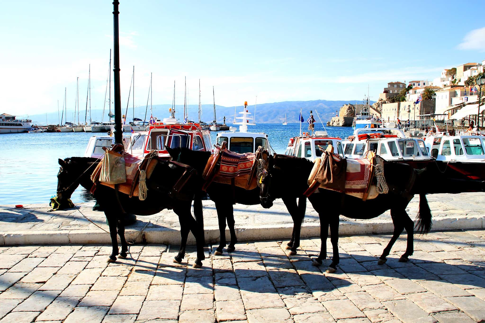 Travel Blog Hydra Greece