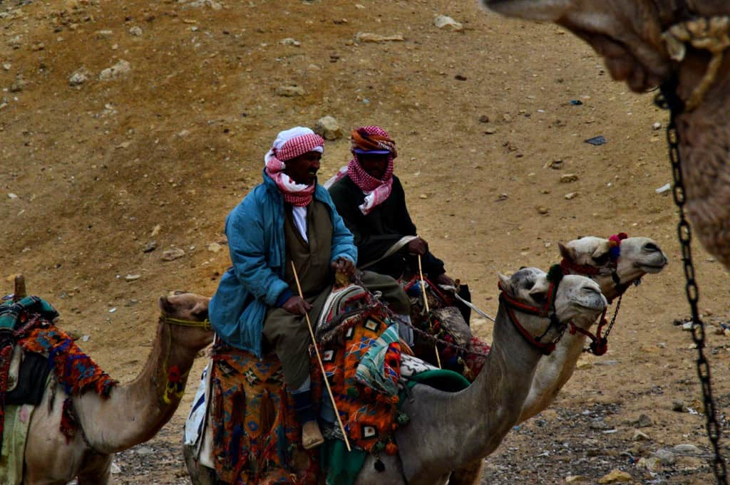 Camel drivers are met all over Cairo, usually outside the center of the city.