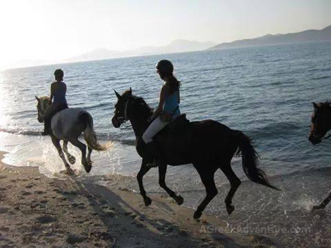 Beach Horseback Riding Hawaii Big Island