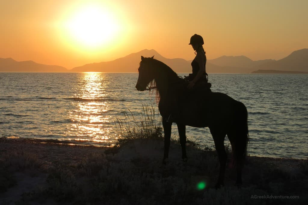 Horseback Beach Riding Near Pak Island Nc