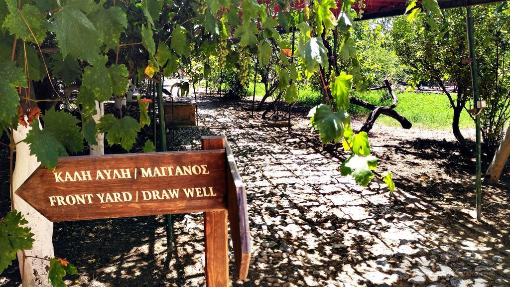 Chios Kampos Citrus and Anavatos Village