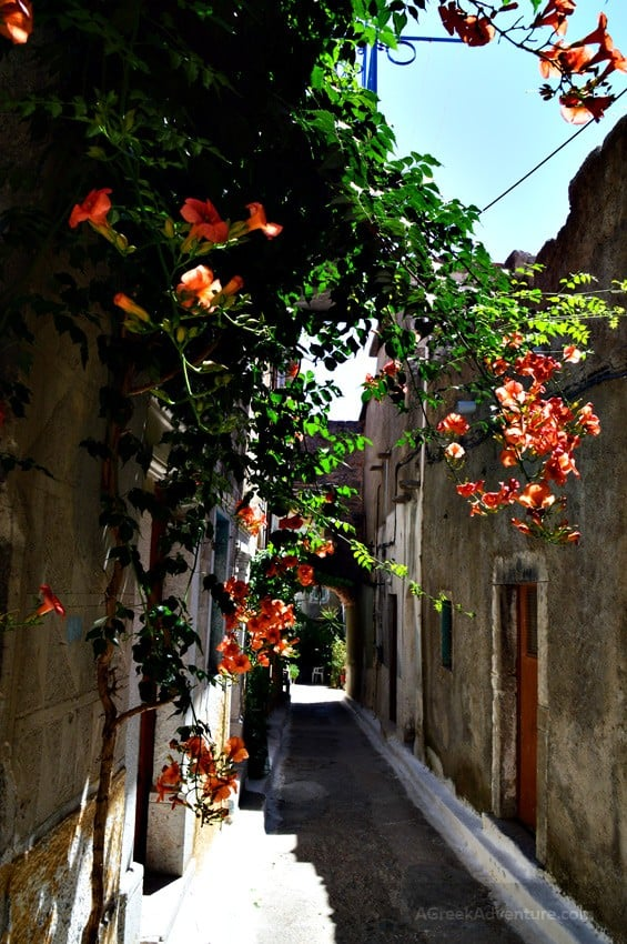 Chios Villages, Olympi