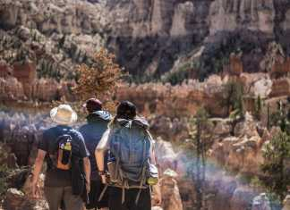 Waist to Neck: 10 Tips You Need to Know for Hiking Equipment