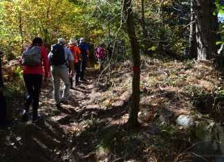 Feet to Waist: 7 Hiking Tips for Beginners