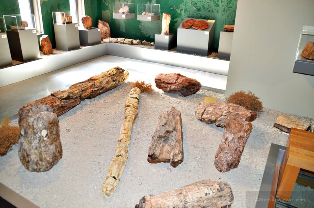 Ancient Petrified Forest of Lesvos - Things To Do in Lesvos Greece