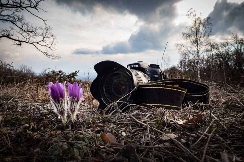 How to Choose the Best Cameras for Hiking But Not Only