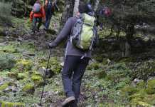 Best Hiking Pants Tips to Gain on Money and Quality