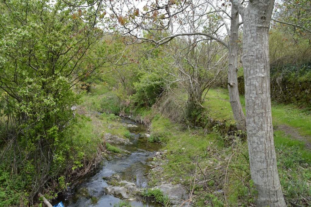 Hiking through the Chestnut Forest of Agiassos, Lesvos