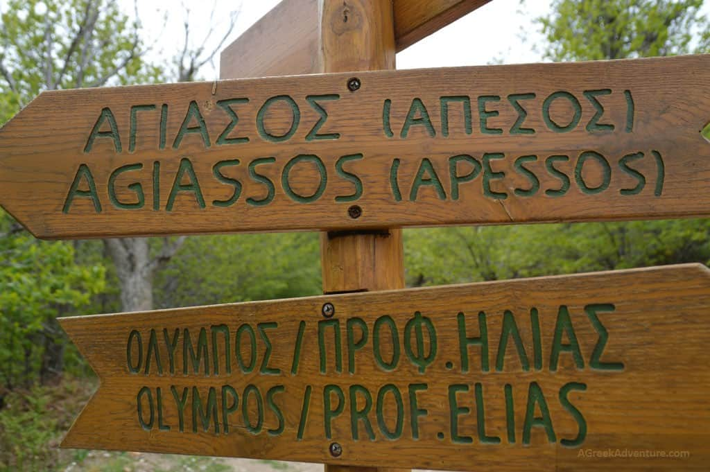 Hiking through the Chestnut Forest of Agiassos, Lesvos