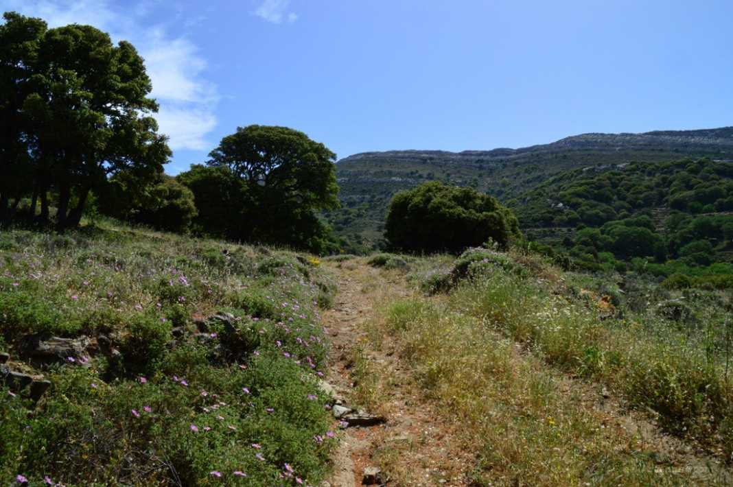 Hiking Naxos Routes: Moni To Apeiranthos via Sifones