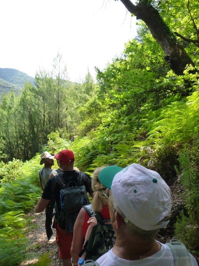 Waterfalls in Greece: Nemouta Waterfalls, Foloi Forest