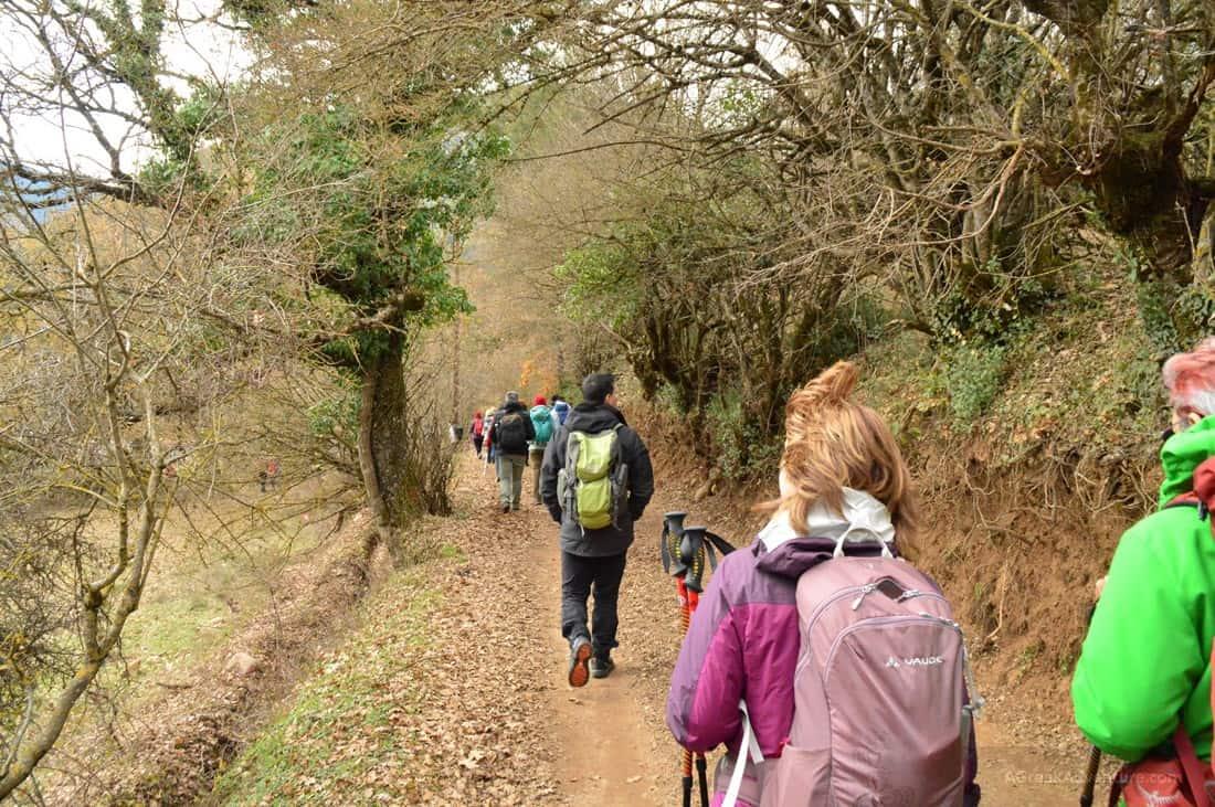 Reviewing Decathlon Trekking Gear While Climbing in Karpenisi