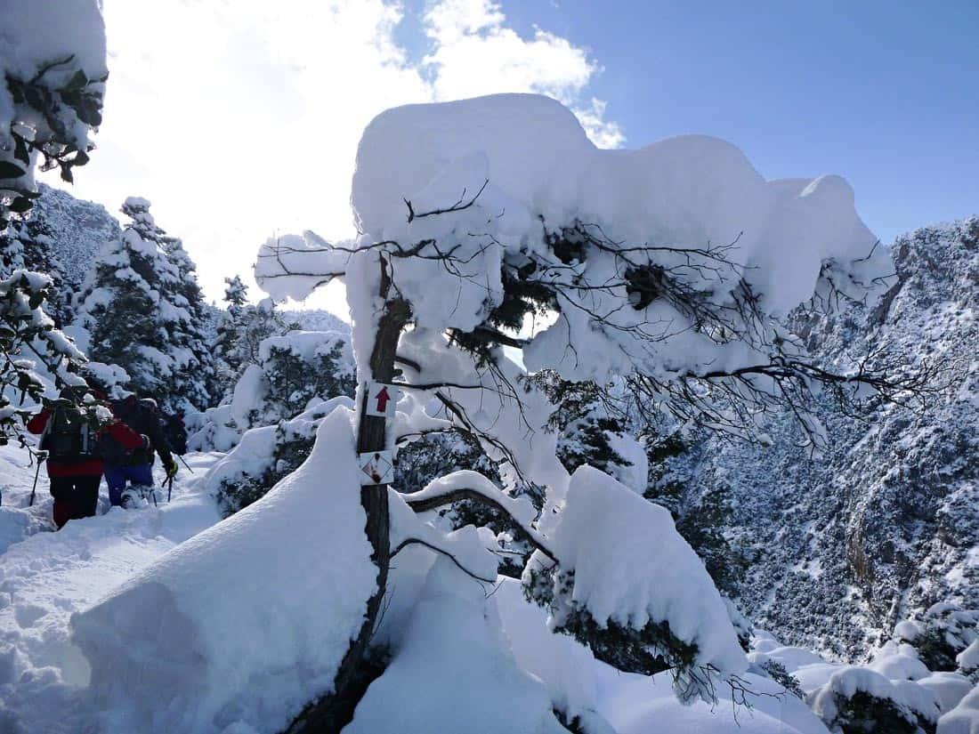 Mount Parnassus Greece Snow Trekking