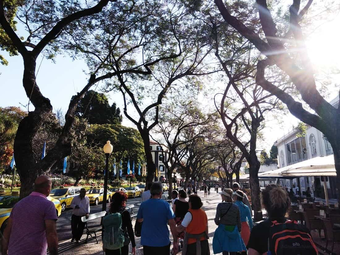 Things To Do in Funchal Madeira Portugal Personal Experience