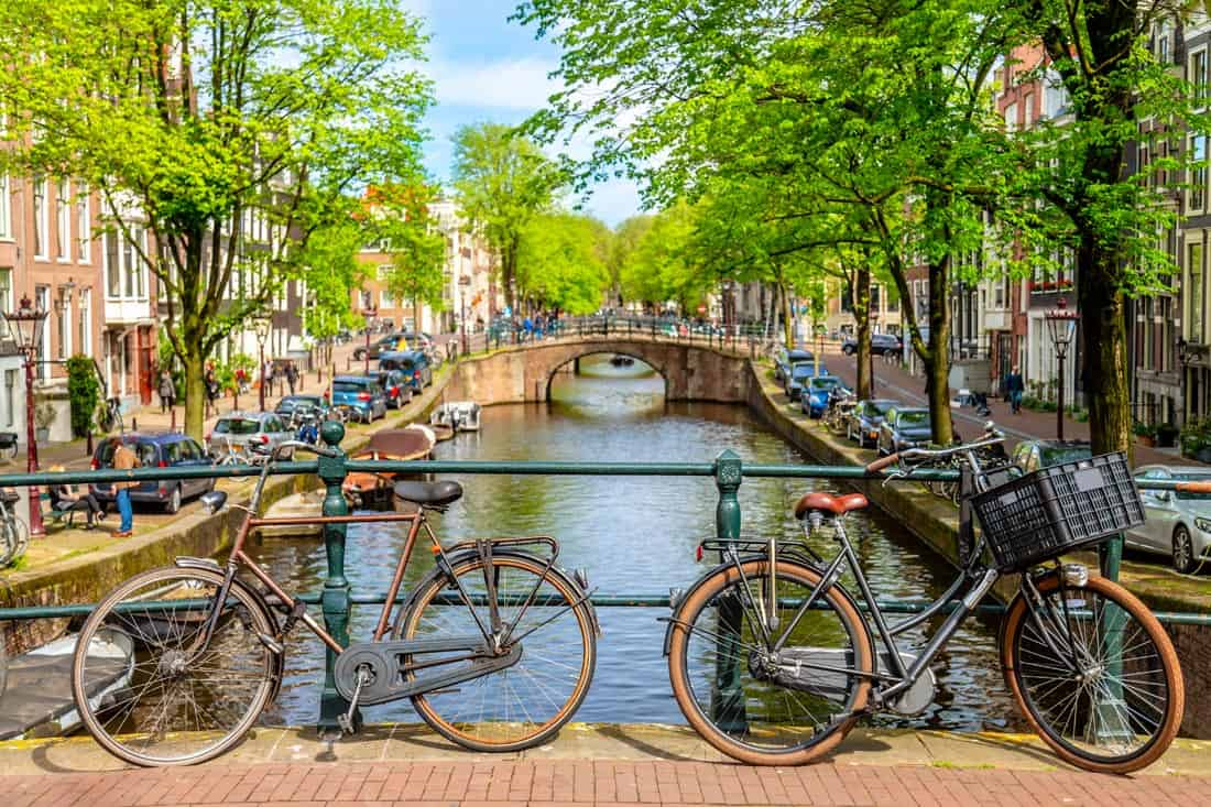 Amsterdam in the Summer
