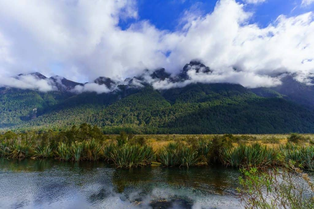 Milford Track Most Beautiful Places In New Zealand