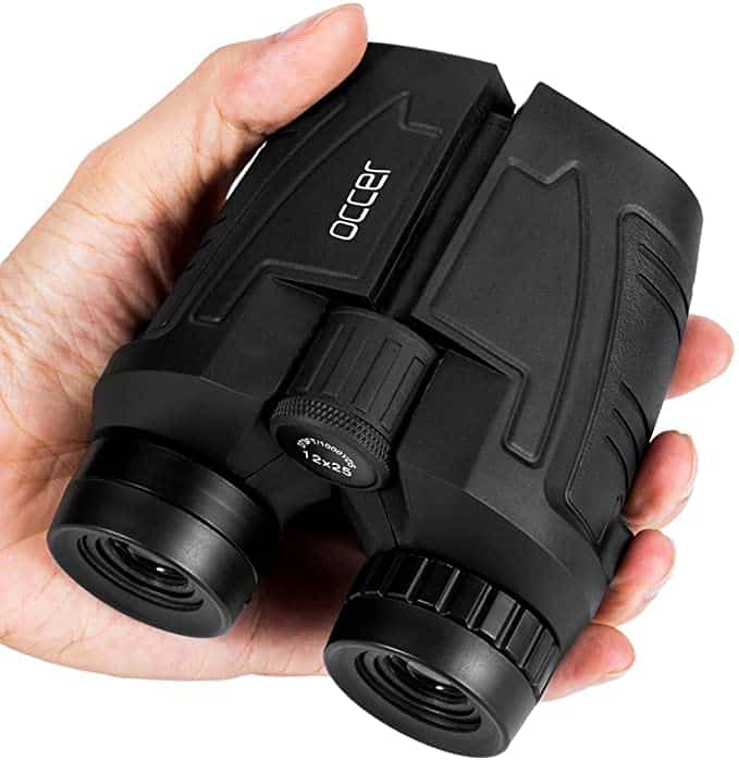 Best Compact Binoculars with Clear Low Light Vision